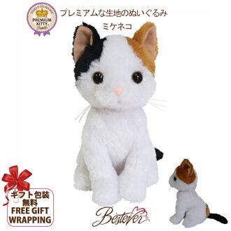 猫咪可爱、 现实塞满   溢价凯蒂海蒂 10P01Oct16