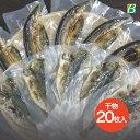 送料無料 風雅のおさかな三昧 20枚入 干物セット 干物 魚 ひもの アジ サンマ カマス あじ きんめだい かます さんま 鯵 金目鯛 秋刀魚…
