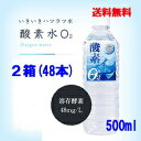 奥長良川名水 酸素イン 2箱セット(500ml×48本) 産地直送 送料無料