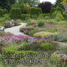 【宿根草】Better Gardens農場長オススメ 季節の宿根草 10ポットセット(2ポット5セット)【Aグループ】