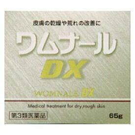 【第3類医薬品】ワムナールDX(65g)
