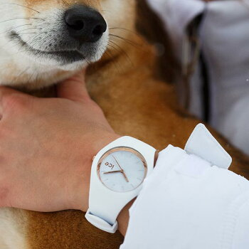 アイスウォッチ公式ストアICE-WATCHICEGLAMアイスグラムスモールサイズ全4色icewatch腕時計