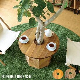 プランターテーブル サイドテーブル PLT Plants Table(プランツテーブル) サークルΦ45cm カラー(チーク・マンゴー) 天然木 観葉植物テーブル 西海岸