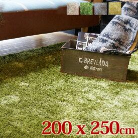 SH-RUG 200×250cm 全4色 ベージュ グリーン グレー イエローグレー ラグ ラグマット カーペット オールシーズン ホットカーペット対応 夏 冬 北欧 長毛 おしゃれ 一人暮らし シンプル 西海岸 サーフ ヴィンテージ インテリア 絨毯 シャギーラグ やわらかい きもちいい