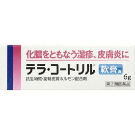 【第(2)類医薬品】 テラ・コートリル軟膏a(6g)武田コンシューマーヘルスケア Takeda Consumer Healthcare Company