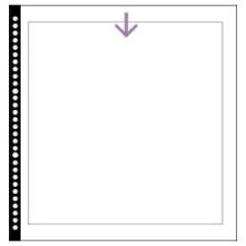 ハクバ HAKUBA SF-1 4切用 替台紙 ホワイト[SF1ダイシ]
