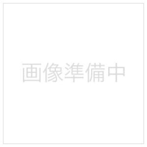 長谷川製作所 Hasegawa ヤスリセット スタンダード5本組み TT-15