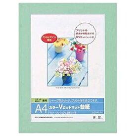 ナカバヤシ Nakabayashi Vカットマット台紙 Digio (A4/グリーン) DGVM-A4-G[DGVMA4G]