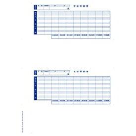オービック ORBIC 単票封筒用支給明細書 (300枚入:600片) 6202[09SP6202]