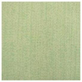 青木 AOKI 2枚組 遮光カーテン クレア(100×200cm/グリーン)