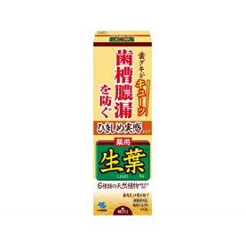生葉 歯磨き粉 ひきしめ生葉 しょうよう 100g【rb_pcp】小林製薬 Kobayashi