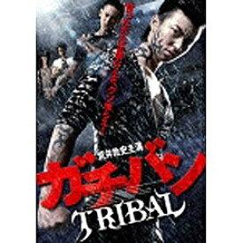 メディアファクトリー ガチバン TRIBAL 【DVD】