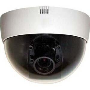 ダイワインダストリ DAIWA industry 【屋内用】ドーム型カラーカメラ(マイク付き) SE-8331MG[SE8331MG]