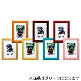 ハクバ HAKUBA カラーウッドフレーム (グリーン) 506891[FWCWGR2L]