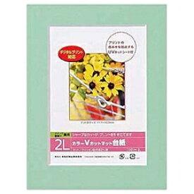 ナカバヤシ Nakabayashi Vカットマット台紙 Digio (2L/グリーン) DGVM-2L-G[DGVM2LG]