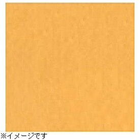 スーペリア Superior 【スーペリア背景紙】BPS-2705(2.72×5.5m) No.35イエローオレンジ[BPS2705#35トクスン] 【メーカー直送・代金引換不可・時間指定・返品不可】