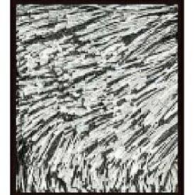 スミノエ SUMINOE ラグ ネオグラス(200×200cm/ブラック)【日本製】[NGL10200X200]