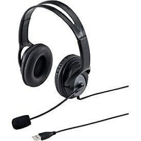 サンワサプライ SANWA SUPPLY MM-HSUSB17BK ヘッドセット ブラック[USB /両耳 /ヘッドバンドタイプ][MMHSUSB17BK]