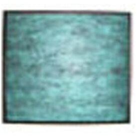 東芝 TOSHIBA 【空気清浄機用フィルター】 セット (集じん+脱臭+除菌フィルター) CAF-E2FS[CAFE2FS]