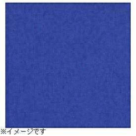 スーペリア Superior 【スーペリア背景紙】BPS-2705(2.72×5.5m) No.11ロイヤルブルー[BPS2705#11トクスン] 【メーカー直送・代金引換不可・時間指定・返品不可】