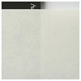 アワガミファクトリー Awagami Factory アワガミインクジェットペーパー 三椏(みつまた)-白-二層紙 (A3ノビサイズ・10枚) IJ-0237[IJ0237]【wtcomo】