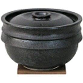 長谷製陶 【長谷製陶】 陶珍かまど「極」(二合炊き) NC-80[NC80]