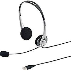 サンワサプライ SANWA SUPPLY ヘッドセット シルバー MM-HSUSB16SV [USB /両耳 /ヘッドバンドタイプ /ダイナミック型30mm(ステレオ)][MMHSUSB16SV]