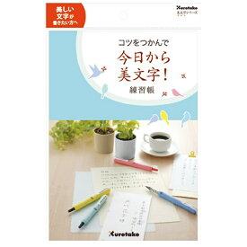 呉竹 Kuretake コツをつかんで今日から美文字!(練習帳)[DAW1008]