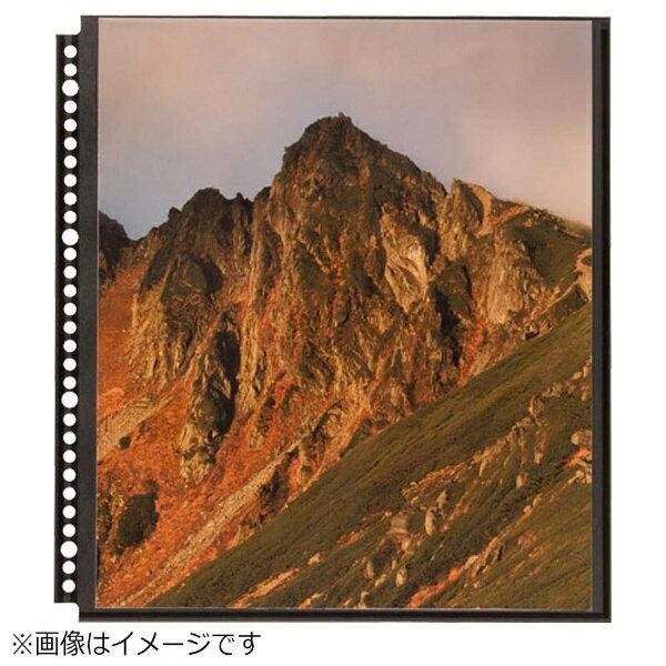 ハクバ 4切プリント用()ブラック替台紙) SF-1[SF1]