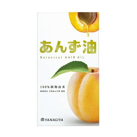 柳屋本店 yanagiya 柳屋 あんず油 60ml【rb_pcp】
