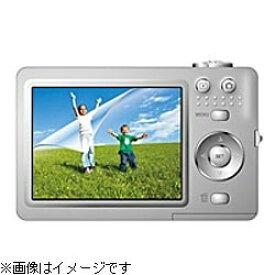 エレコム ELECOM 液晶保護フィルム(フリーサイズ・光沢仕様) DGP-004FLAG[DGP004FLAG]