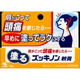 【第3類医薬品】 ズッキノン軟膏(15g)【wtmedi】小林製薬 Kobayashi