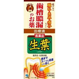 【第3類医薬品】 生葉液薬(20g)【wtmedi】小林製薬 Kobayashi