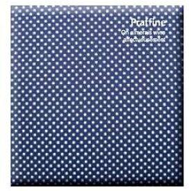 ナカバヤシ Nakabayashi Digioデジタルフリーアルバム「プラフィーネ」(デミサイズ/ブルー) ア-DP-144-B[アDP144B]