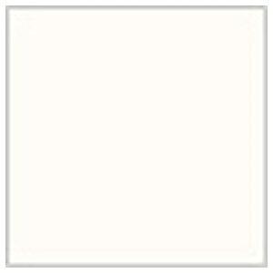 Mr.カラー グランプリホワイト 10ml C69