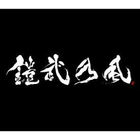エイベックス・エンタテインメント Avex Entertainment 鎧武乃風/JUST LIVE MORE(DVD付) 初回生産限定盤 【CD】