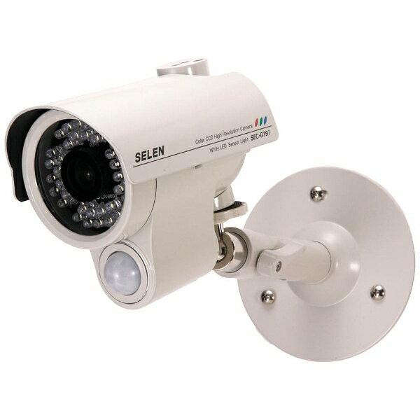 【送料無料】 セレン 【屋外・民生用】「夜でもカラー監視カメラ」白色LEDセンサーライト内蔵 SEC-G791 [生産完了品 在庫限り]