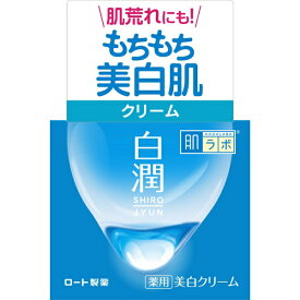 ロート製薬 ROHTO 肌研(ハダラボ)白潤 薬用美白クリーム(50g) [美白クリーム]【wtcool】