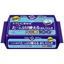 日本製紙クレシア 【アクティ】 トイレに流せるたっぷり使えるおしりふき 100枚