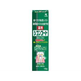 小林製薬 Kobayashi シコンコート 歯磨き粉 薬用 シコンコート 110g【wtcool】