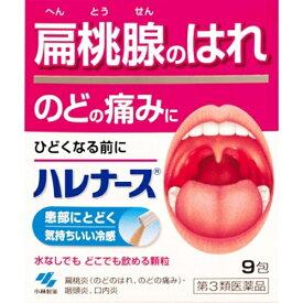 【第3類医薬品】 ハレナース(9包)【wtmedi】小林製薬 Kobayashi