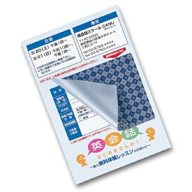 サンワサプライ SANWA SUPPLY 貼り直しができる目隠しシール (ハガキサイズ 2面・20シート) JP-HKSEC11[JPHKSEC11]