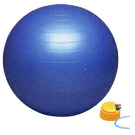 秦運動具工業 HATAS バランスボール セイフティー(ブルー/φ55cm) DB55P【ポンプ付】