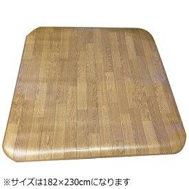東京シンコール TOKYO SINCOL ラグ 7060CF 8026(182×230cm/ブラウン)[946078]