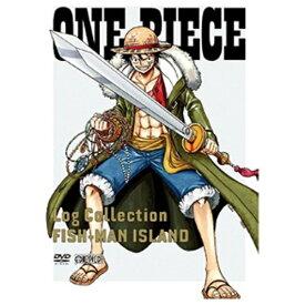 """エイベックス・ピクチャーズ avex pictures ONE PIECE Log Collection """"FISHMAN ISLAND"""" 【DVD】"""