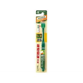 小林製薬 Kobayashi 生葉 歯ブラシ 生葉極幅ブラシ コンパクト やわらかめ 1本