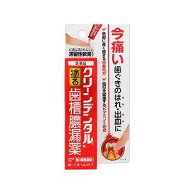 【第3類医薬品】 クリーンデンタルN歯槽膿漏薬(8g)【wtmedi】第一三共ヘルスケア DAIICHI SANKYO HEALTHCARE