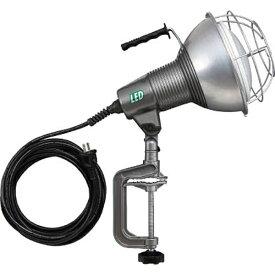 ハタヤリミテッド HATAYA 42W LED作業灯 100V 42W 5m電線付 RXL5W