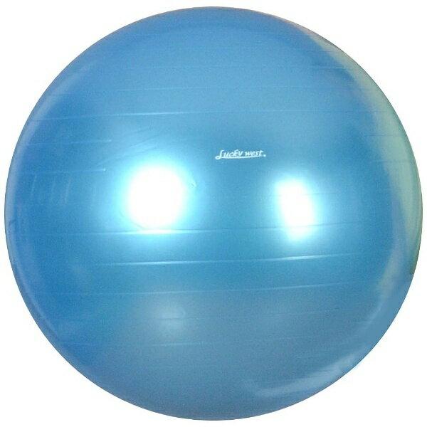 ラッキーウエスト バランスボール YOGA BALL(パールブルー/φ55cm) LG-320
