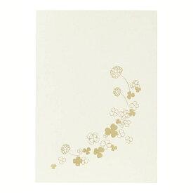 チクマ Chikuma フォトマウントカード ハガキ立 ホワイト